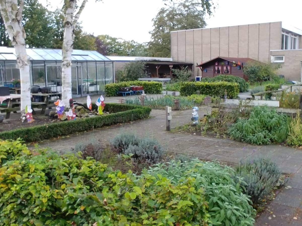 De binnenplaats tuin